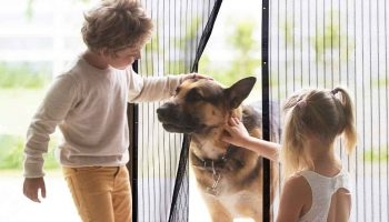 The 10 Best Magnetic Screen Doors In 2019