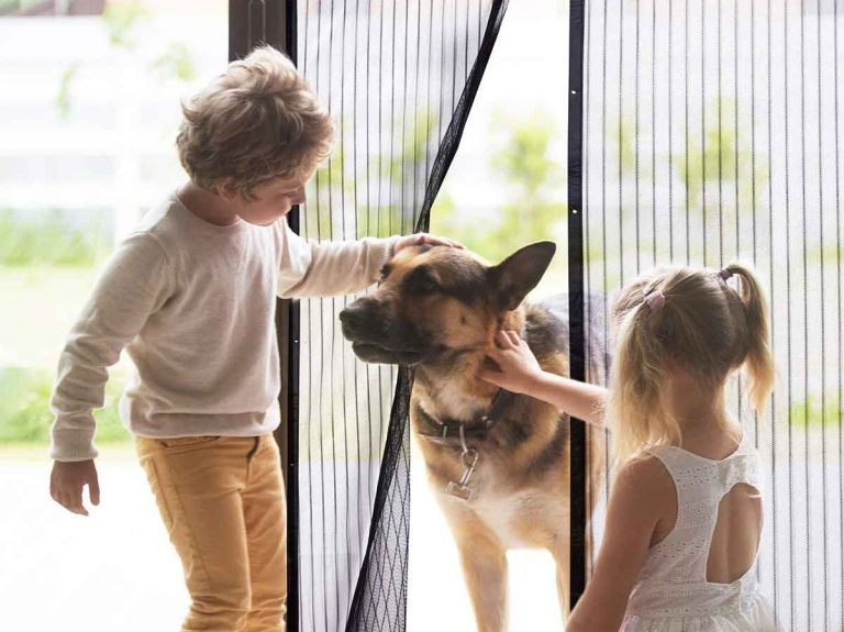 The 10 Best Magnetic Screen Doors In 2021