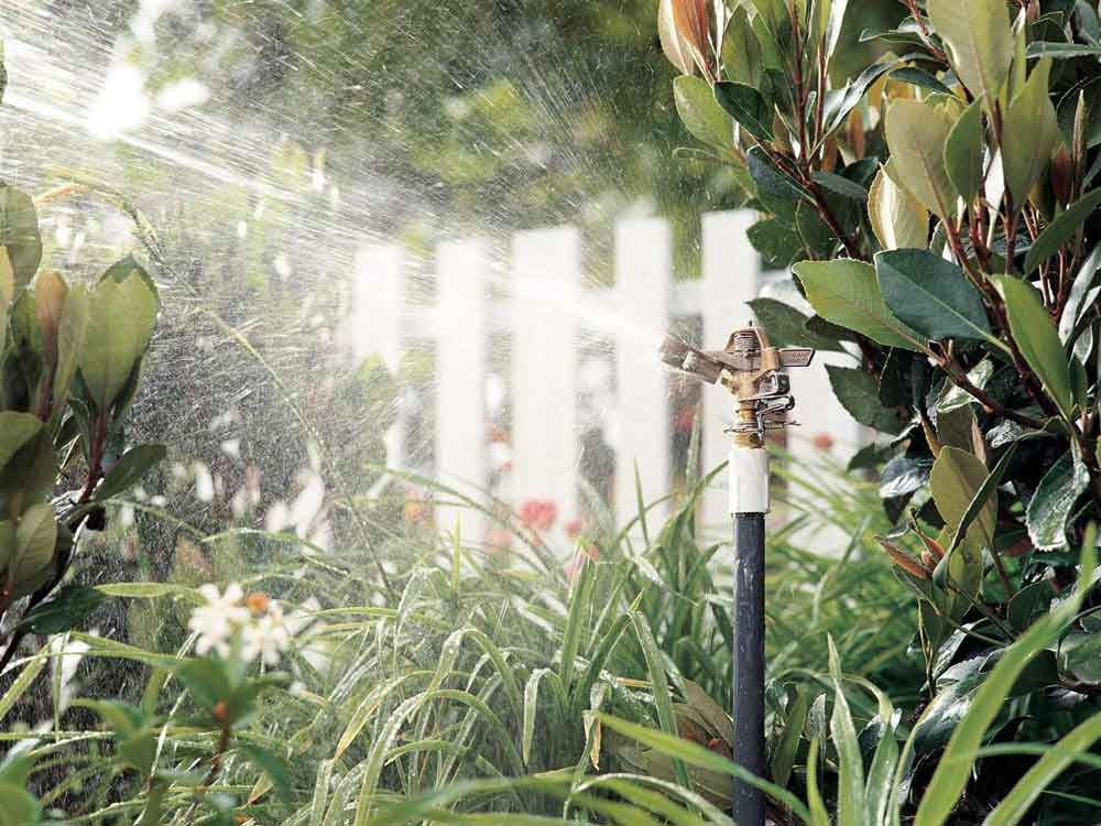 water sprinkler for plants