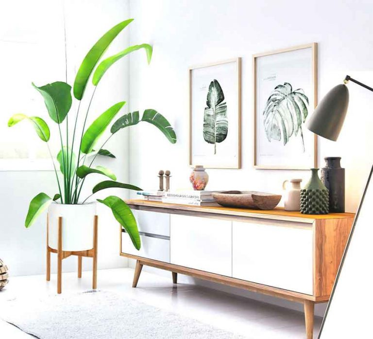 The 10 Best Indoor Plant Stands In 2021