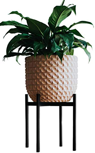 Plant Stand For Indoor and Outdoor Pots By Thorne & Co