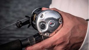 The 10 Best Saltwater Spinning Reel For The Money 2019
