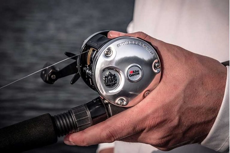 11 Best Saltwater Spinning Reel For 2021
