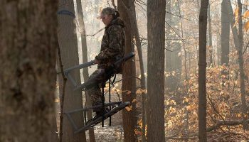 The 11 Best Climbing Tree Stands [For RIfle, Bow Hunting 2019]
