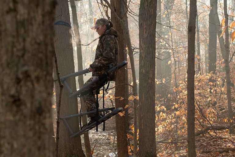 The 11 Best Climbing Tree Stands [For RIfle, Bow Hunting 2021]