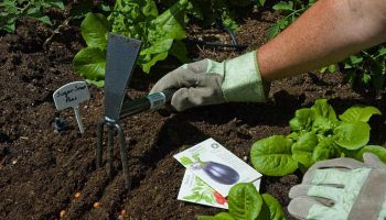 The 11 Best Hand Tillers For Your Garden